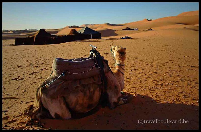 moroccoblog37