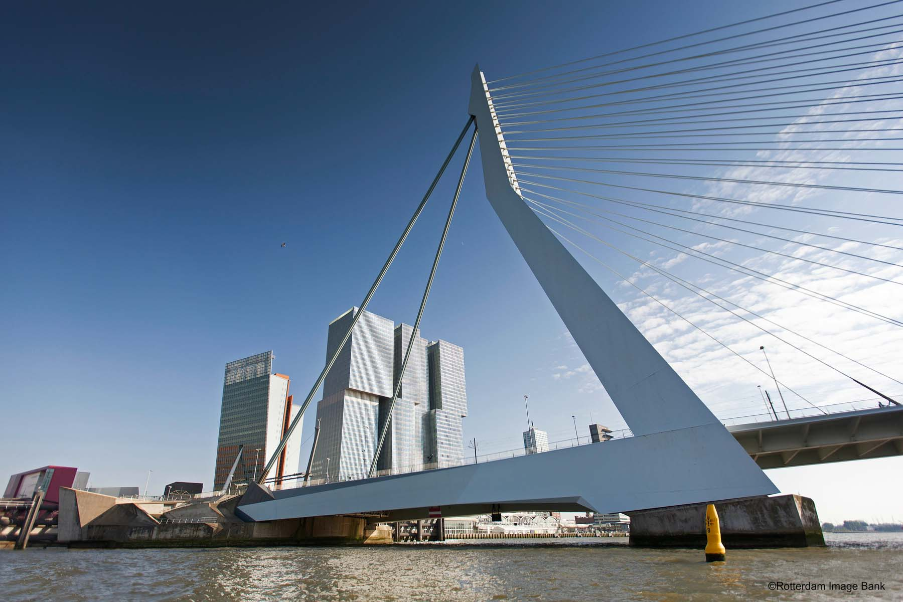 The cool guide to rotterdam with 10 cool things to do for Architecture rotterdam