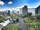 Rotterdam citytrio